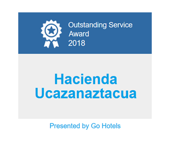 Outstanding Service Award 2018 - Gohotels.com